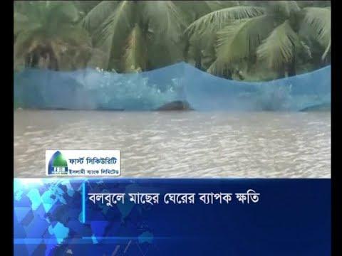 ঘুর্নিঝড় বুলবুলে প্রায় ৪৭ কোটি টাকার মাছ নষ্ট | ETV News