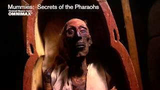 Nonton Mummies  Secrets Of The Pharaohs Trailer Film Subtitle Indonesia Streaming Movie Download