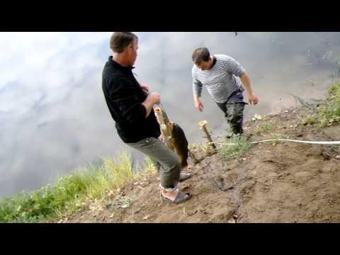 рыбалка сорочьи горы видео