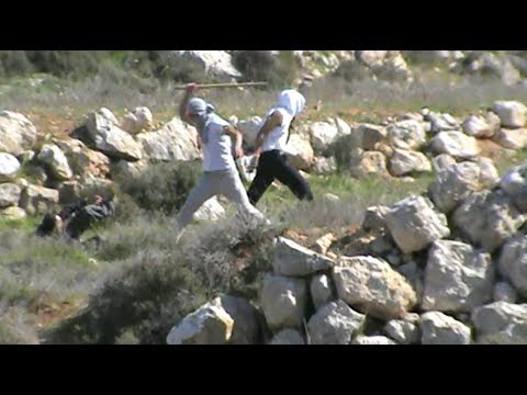 Settlers from Eshtamoa attacking Ta'ayush activists Palestin