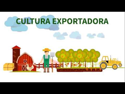 Resultado das ações InterAgro – Rede Agropecuária de Comércio Exterior - em 2017