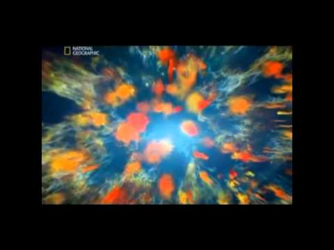 Tom Horn - Vatican and Aliens 3/25/13