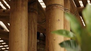 Bambú. La industria del futuro, HOY