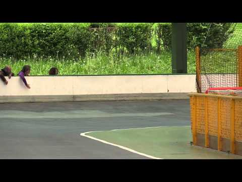 Patinaje Velocidad Final Cto Navarro y JDN Pista (11)