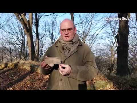 Im Westen der Stadt Dresden: Der 1.000 Jahre alte »Ni ...