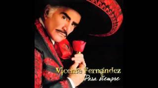 Vicente Fernandez  La Derrota