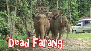 Visitng Waterfalls, Caves, Blue Lagoon and checking out some local villages in Vang Vien, Laos. Thanks for watching, give this video a huge thumbs up, click ...