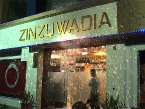 Video of Zinzuwadia & Co.