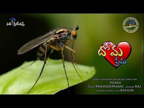 Dhoma Prema (Mosquito Love) short film