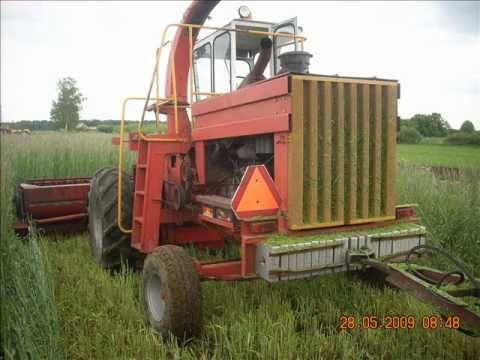 Sieczkarnia Z350,żyto na kiszonke,maj 2009