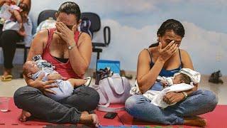 TV Folha: Zika, microcefalia e os dilemas da gravidez