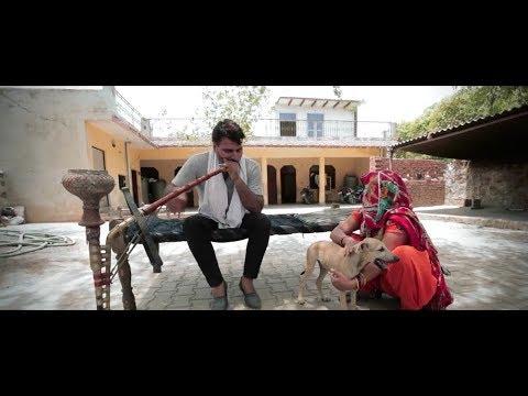 Video Pilla Palungi Jarur Haryanvi Full DJ song download in MP3, 3GP, MP4, WEBM, AVI, FLV January 2017