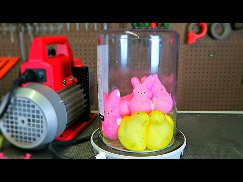 What Will Happen If You Put Peeps in a Vacuum Chamber