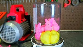What Will Happen If You Put Peeps in a Vacuum Chamber? - Easter Special