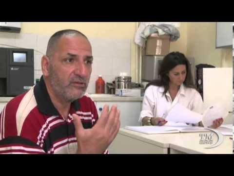 Non invadere lo spazio sottostante. Medici in Calabria tra gatti selvaggi e sanità sperduta
