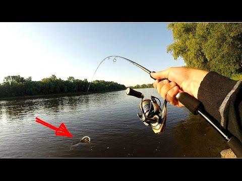спиннинг для джига с берега на реке
