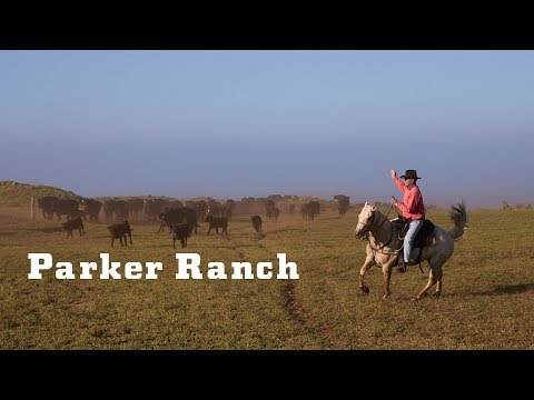YETI Presents: Parker Ranch