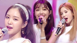 SBS Inkigayo 인기가요 EP919 20170716Apink (에이핑크) - FIVESBS Inkigayo(인기가요) is a Korean music program broadcast by SBS. The show features some of the hottest and popular artists' performance every Sunday, 12:10pm. The winner is to be announced at the end of a show. Check out this week's Inkigayo Line up and meet your favorite artist!☞ Visit 'SBS Inkigayo' official website and get more information:http://goo.gl/4FPbvz☞ Enjoy watching other stages of your favorite K-pop singers!:https://goo.gl/n2mUBS