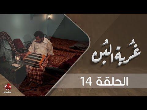 غربة البن | الحلقة  14 | محمد قحطان - صلاح الوافي - عمار العزكي - سالي حماده - شروق | يمن شباب