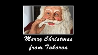 Tokoroa New Zealand  city photos gallery : Christmas Greetings from Tokoroa, New Zealand