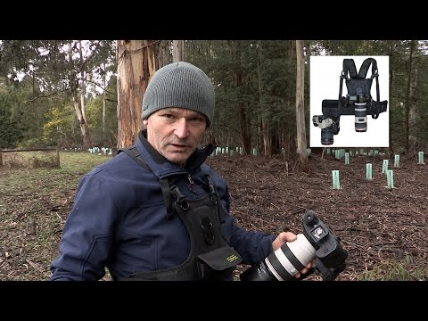 Wildlife Photography.  Cotton Carrier  review