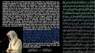 Nasser Al-Qatami - Surat At-Talaq And Surat At-Tahrim