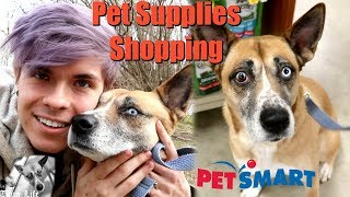 PET SUPPLIES SHOPPING WITH NOVA by Tyler Rugge