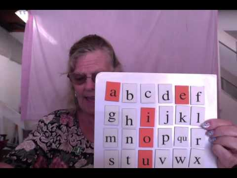 Wilson Reading: Lesson 2 - Vowel Review, Consonant Sounds