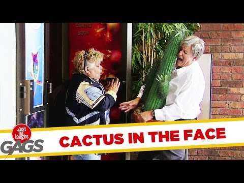 BOOM! CACTUS IN THE FACE - Youtube