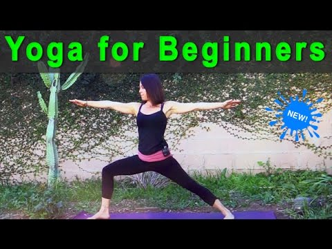 Yoga for Beginners | an introduction to beginners yoga (26 min) 💗