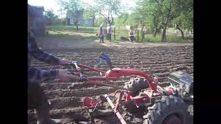 Посадка картофеля мотоблоком Беларус09Н. Трехрядный окучник. Нарезка борозд.