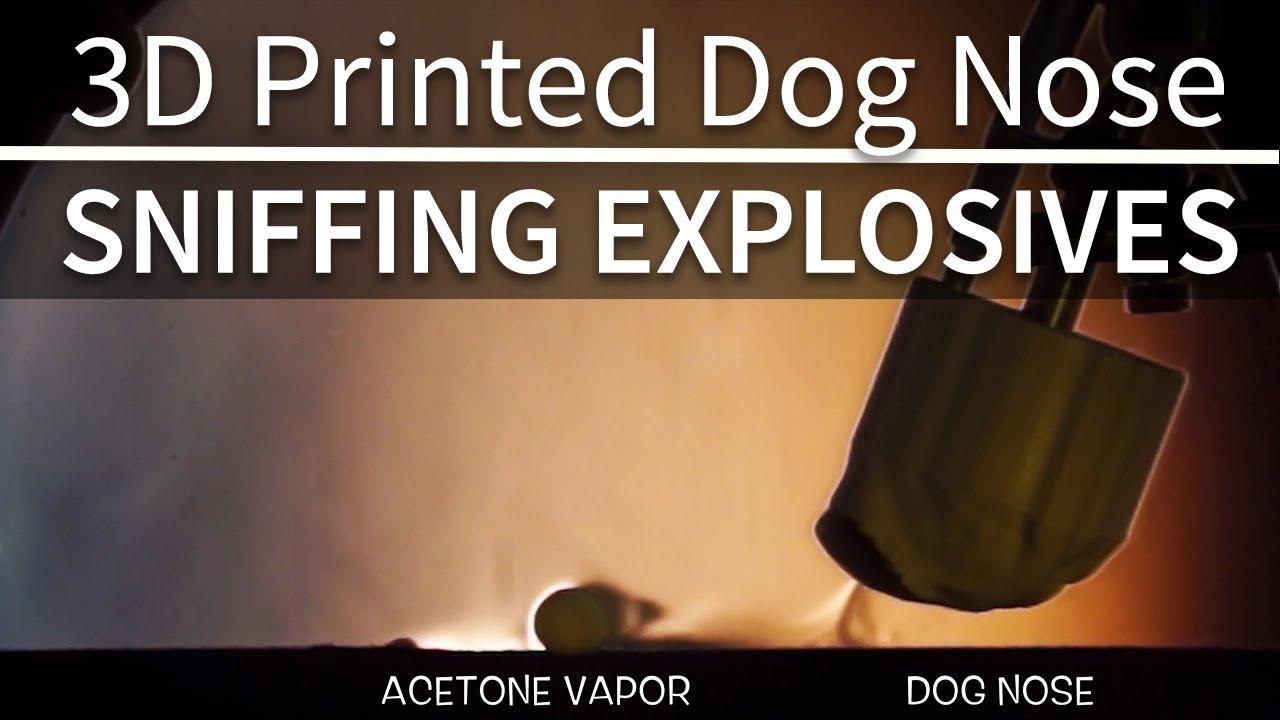 Инженеры вдохновились собачьим носом при создании нового детектора запахов
