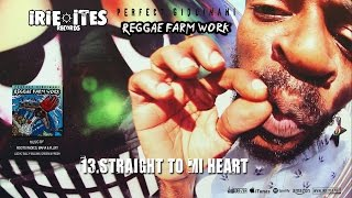 Download Lagu PERFECT GIDDIMANI - STRAIGHT TO MI HEART - SOULFUL SPIRIT RIDDIM - IRIE ITES RECORDS Mp3