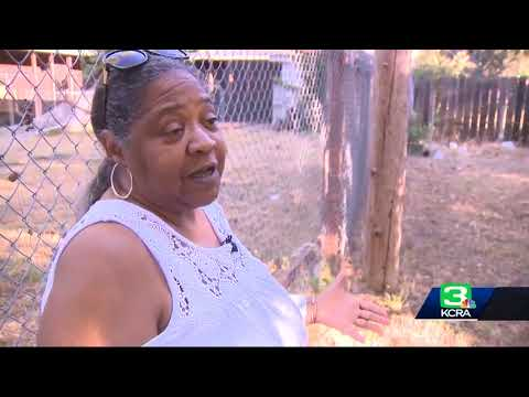 Fairfield woman witnesses neighbor being mauled by dog