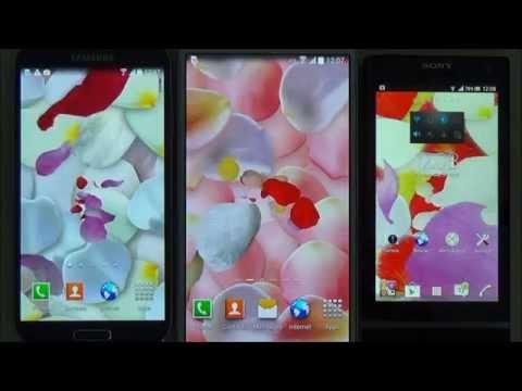 Video of 3D Petals Live Wallpaper