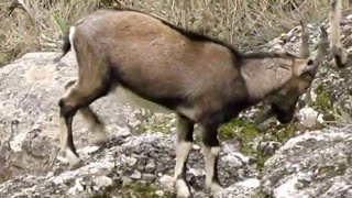 Κρήτη: Φύση σμιλεμένη από το χρόνο