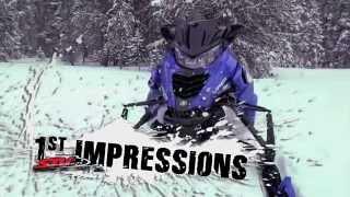 2. 2014 Yamaha Viper XTX