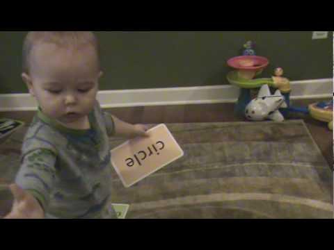 طفل عمره 16 شهرًا يقرأ لافتات بالإنجليزية