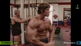 Video Arnold Schwarzenegger olympia bodybuilding motivation 2015 MP3, 3GP, MP4, WEBM, AVI, FLV September 2018