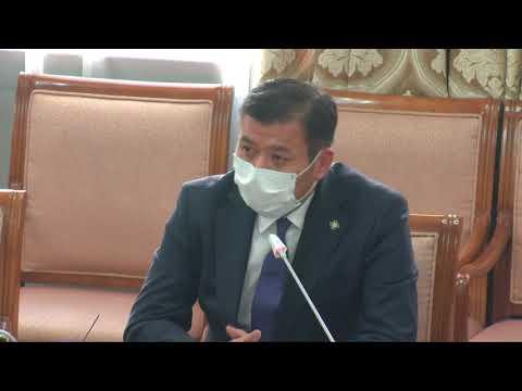 Б.Энхбаяр: УИХ-ын тогтоолыг Засгийн газар хэрэгжүүлэхгүй байж болохгүй