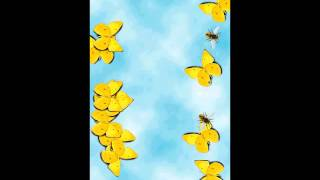 Butterfly Math YouTube video
