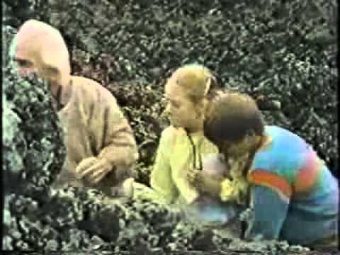 Under The Mountain   1981   Episode 7