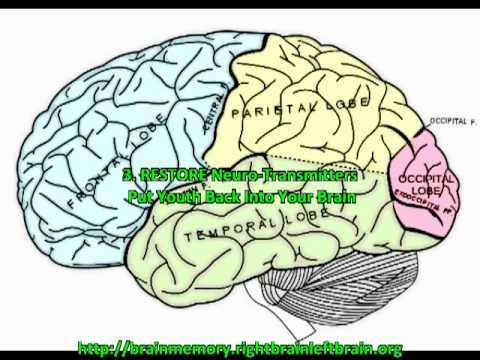 How To Improve Short Term Memory & Recall Speed.mp4