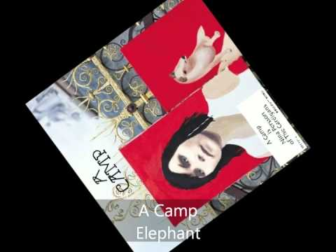 Tekst piosenki A Camp - Elephant po polsku