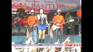 Video PANTURA Secawan madu byAcha kumala live in sumur,brangsong MP3, 3GP, MP4, WEBM, AVI, FLV Desember 2018