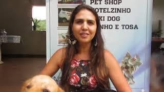 Qual a importância do Banto e Tosa - Por Mania de Cão