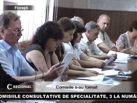 Comisiile s-au format