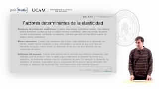 Microeconomía I - La Elasticidad De La Oferta Y De La Demanda (3) -  Alfonso Rosa García