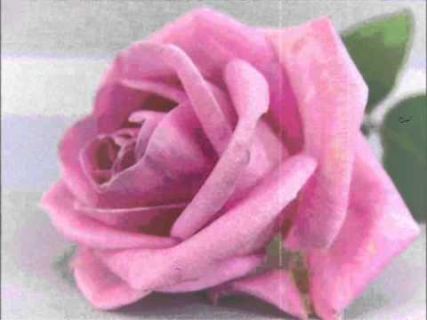 Blue Rodeo ~ Rose Coloured Glasses ڿڰۣ☸ (1987)