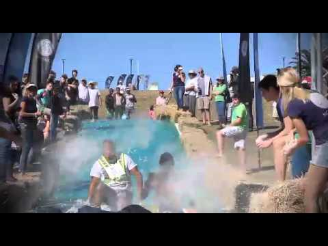 Mohair SA - Colour Run 2014